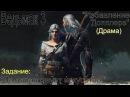 Witcher 3 Да здравствует искусство Пьеса Избавление Допплера Драма