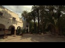 Palmen in Spanien: Huerto del Cura