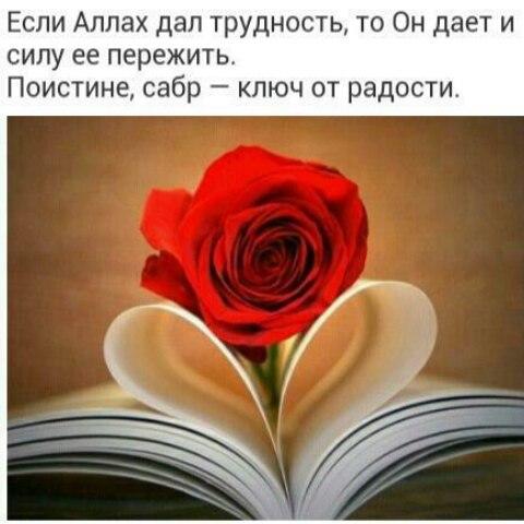 Диана Магомедова - фото №1