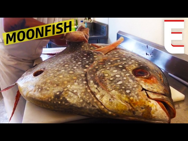 Breaking Down A Giant Moonfish At Greenpoint Fish Lobster Co. — Snack Break