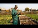Высокоурожайная наногрядка своими руками