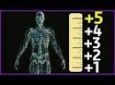 КАК УВЕЛИЧИТЬ РОСТ 10 см за 2 месяца
