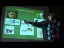 Белов А И Лекция на тему Инволюция мысли