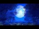 Волшебная ночь фильм сказка
