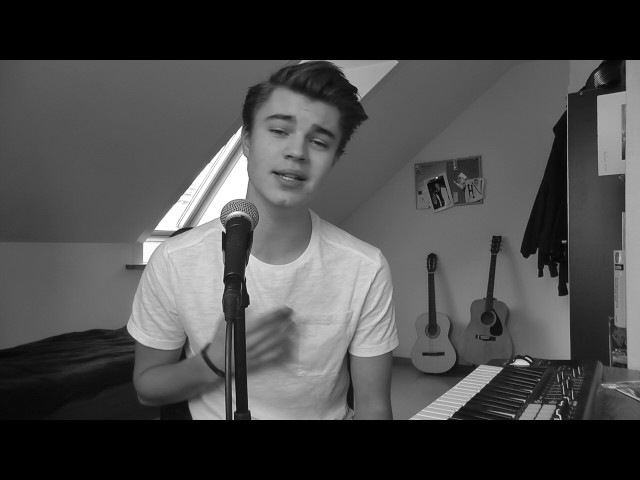 Shape Of You Ed Sheeran Cover By Linus Bruhn
