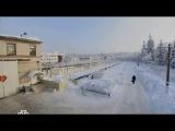 Аркадий Кобяков Сердца крик