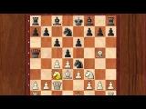 Шахматы.6 Ловушек, в которые ВСЕ попадаются. Ферзевый гамбит