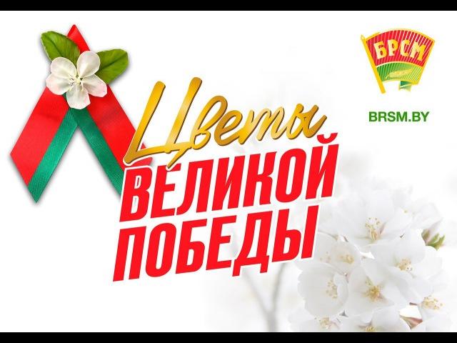 Цветы Великой Победы Дубровенский РК