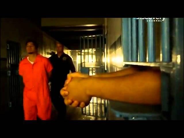Нуэстра Фамилия самая кровавая латиноамериканская банда в сша