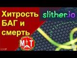 Slither.io Хитрость в слизарио, о которой знают не все и просто весёлый ролик (Мат)
