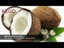 Vietnam Coconut 베트남 코코넛 越南椰子 มะพร้าวเวียดนาม Kelapa Vietnam