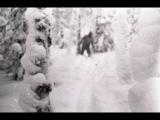 Discovery-Перевал Дятлова гипотеза о йети Dyatlov's pass hypothesis of the yeti 2014