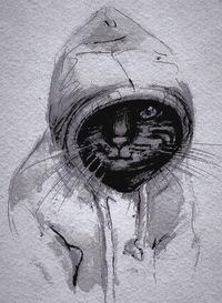 Бодя Кот