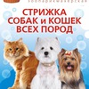 Barbos - стрижка собак и кошек в Челябинске