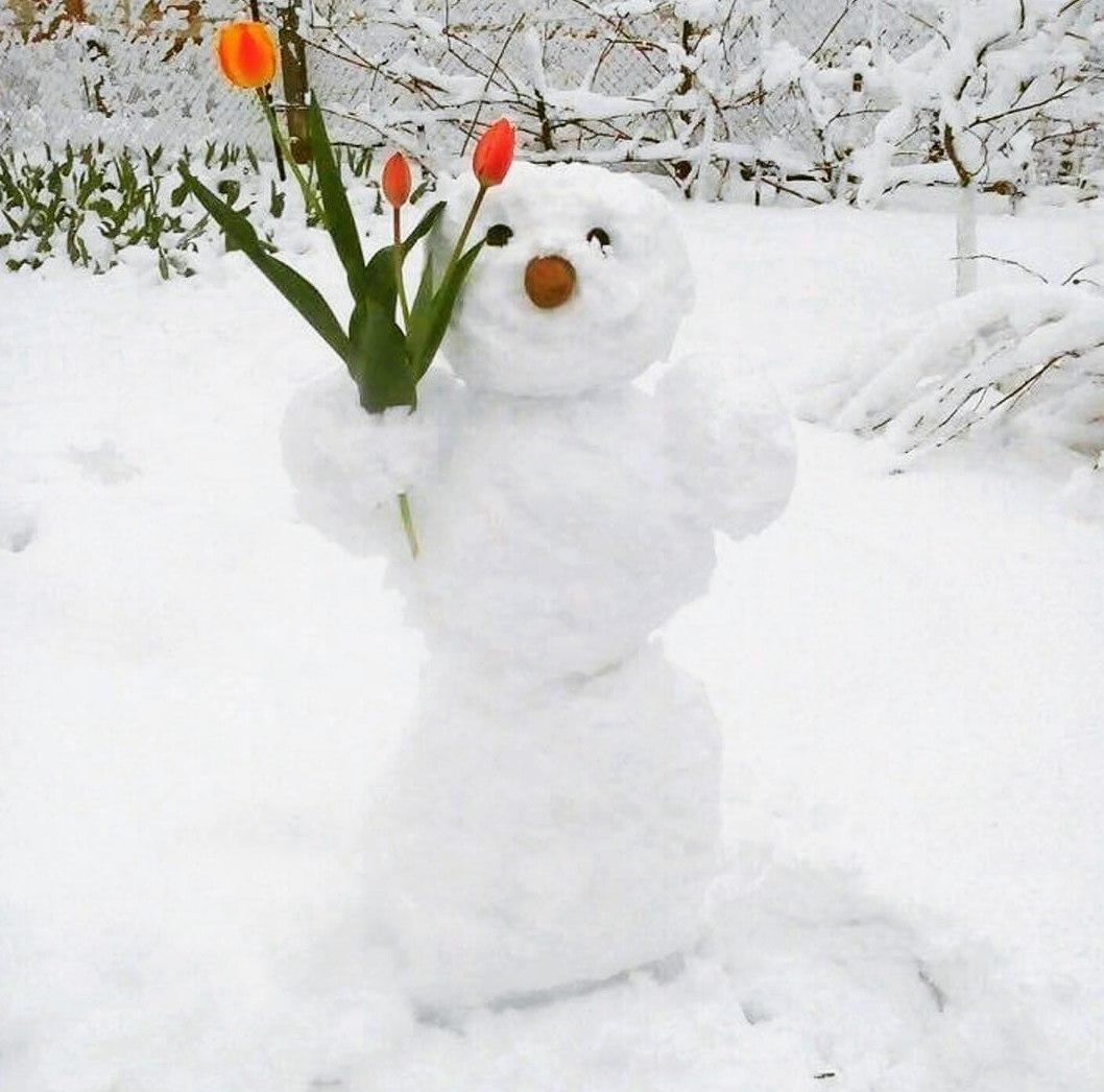 Прикольная картинка снег в апреле, своими руками подарок
