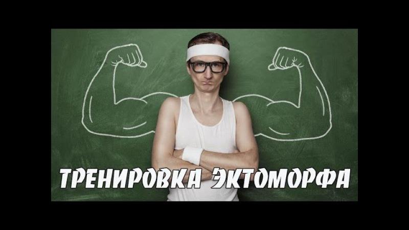 Как набрать массу худому Программа тренировок для эктоморфа