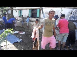 7 potong daging qurban IDHUL ADHA 2016 di desa JAMBU dusun Kedung Cangkring PARE KEDIRI