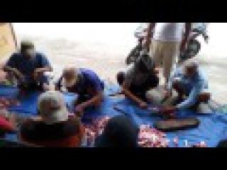 11 potong daging qurban IDHUL ADHA 2016 di desa JAMBU dusun Kedung Cangkring PARE KEDIRI