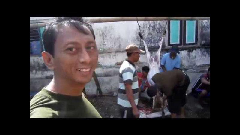 5 potong daging qurban IDHUL ADHA 2016 di desa JAMBU dusun Kedung Cangkring PARE KEDIRI