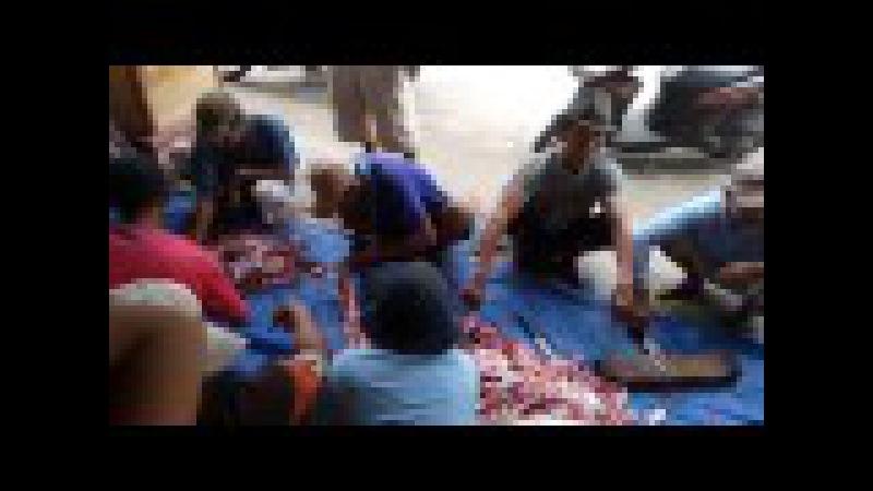 12 potong daging qurban IDHUL ADHA 2016 di desa JAMBU dusun Kedung Cangkring PARE KEDIRI