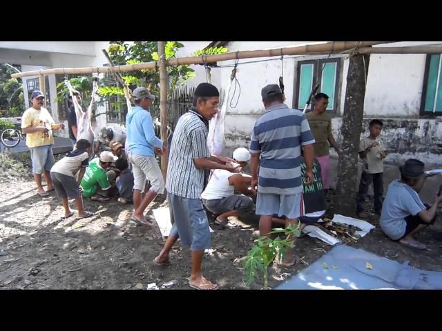 4 potong daging qurban IDHUL ADHA 2016 di desa JAMBU dusun Kedung Cangkring PARE KEDIRI