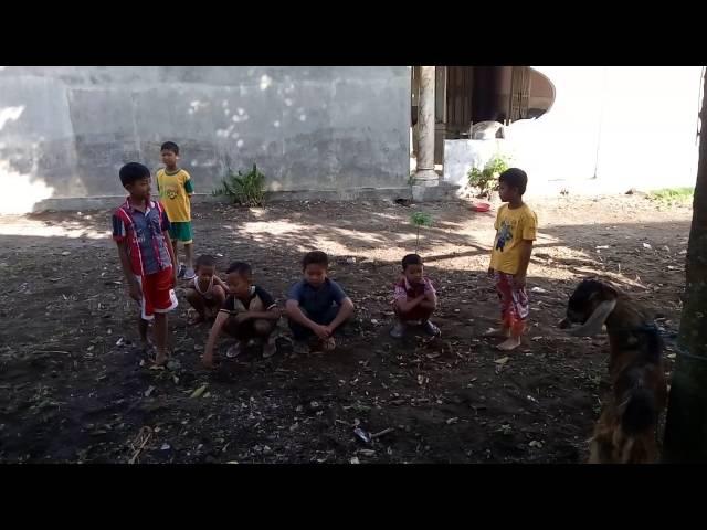 1 bocah bocah desa jambu persiapan potong kambing IDHUL ADHA 2016