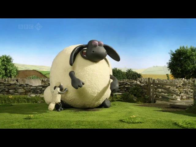 Барашек Шон серия 49 Тимми гигант Shaun the Sheep Supersize Timmy HD