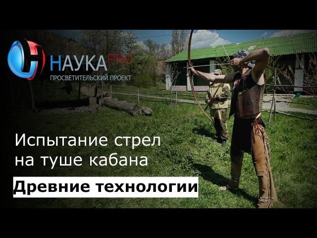 Древние технологии - Испытание стрел на туше кабана