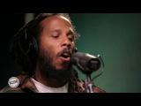 Ziggy Marley performing