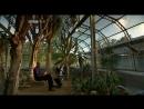 Атом BBC Atom 3 из 3 2007 3 серия Иллюзия действительности