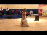 Ekateryna Kornilova Baladi and drum solo 108