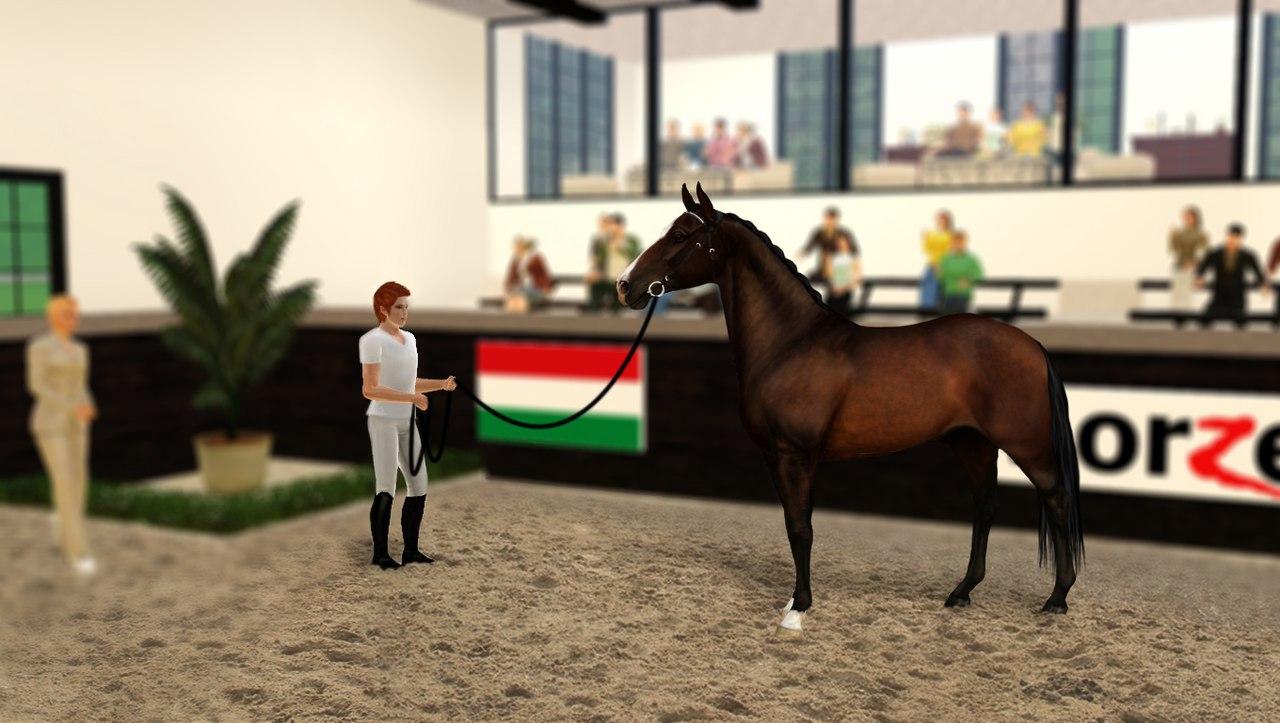 Регистрация лошадей в RHF 2 FbWqy4fNR8I