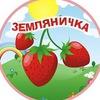 МБОУ ДС №367 - Земляничка 2016