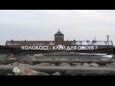 Документальный фильм Холокост клей для обоев