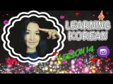 LEARNING KOREAN RUNA KIM LESSON 14