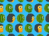 Hedgehog vs Cactus