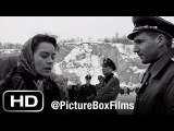 Schindler's List Amon Goeth chooses his housekeeper (ft. Ralph Fiennes and Embeth Davidtz)