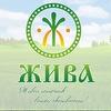 ЖИВА. Полезные продукты и аюрведа в Красноярске