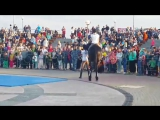 Выступление от конного клуба 8мая,2года Городу Развлечений