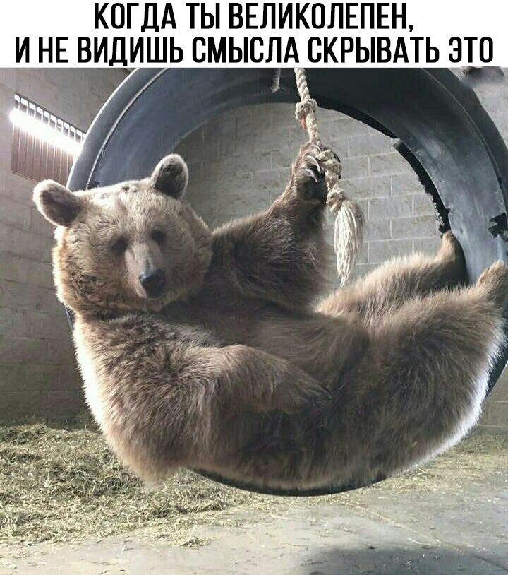 https://pp.userapi.com/c636717/v636717577/5f096/qZ2J4PHmptw.jpg