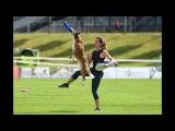 Swiss Discdog Challenge Champions 2016 Eva Zwicker &amp Enya