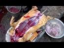 Забой свиней правильная разделка вьетнамской свиньи свинья видео