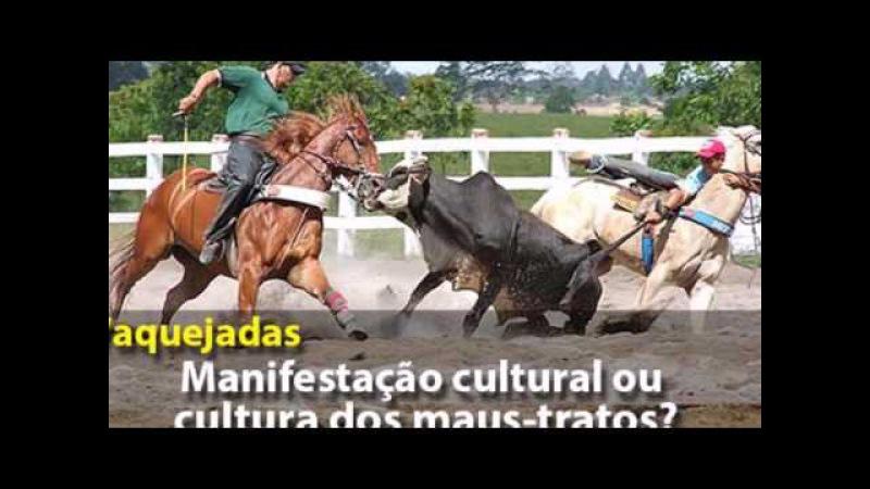 PORQUE ODEIO VAQUEJADAS - ASSISTA E TIRE SUAS CONCLUSÕES!!