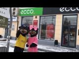 У Мишки ECCO появилась медведица