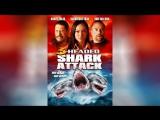 Нападение трёхголовой акулы (2015) 3 Headed Shark Attack