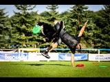 Paco Lobo &amp Cleo freestyle 2nd round Dogfrisbee EC 2016