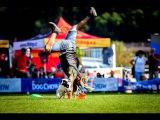 Paco Lobo &amp Syria freestyle 2nd round Dogfrisbee EC 2016