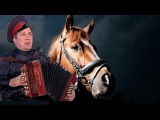 Полынь трава ♫ Цыганская песня ♥Душевная песня под гармонь ♫ Wormwood herb. Gypsy song the ac...