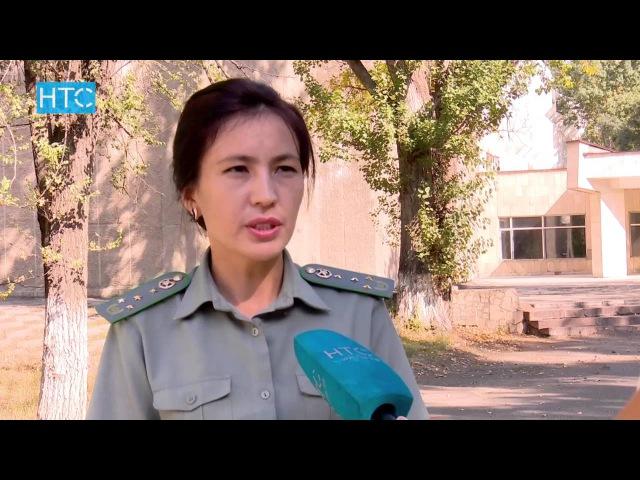 Сүйлөшүүлөр Өзбекстандагы аза күтүүдөн кийин улантылат / 05.09.16 / НТС