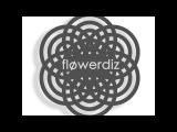 Indie Rock 2017г. Flowerdiz -Sunset in chrome.